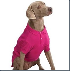 Dog golf shirt