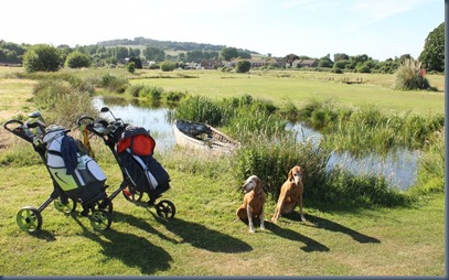 Oak Meadow dog golf 1