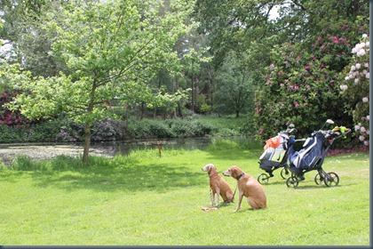Deanwood Park 3