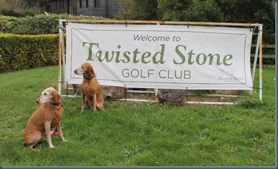 Twisted Stone 3