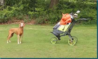 Rusty golf cart