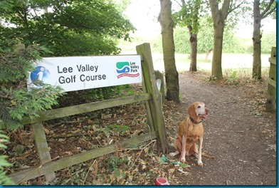 Lee Valley 1