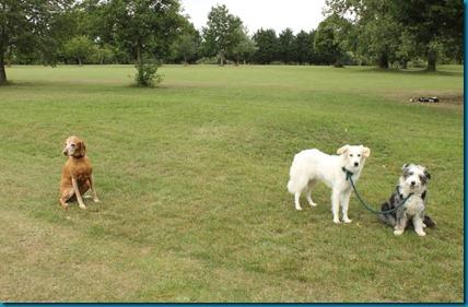 Shrivenham Park 4