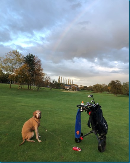 Feldon Valley dog golf 4