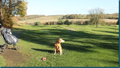 Donnington Valley 2 dog golf