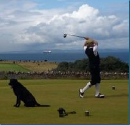 Dog Golf Hall of Fame - Dexter